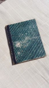 antique ledger book 1870